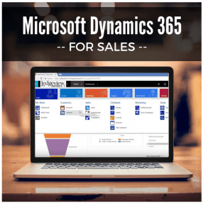 Dynamics 365 for Sales Border