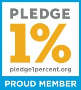 Salesforce Pledge 1% Ledgeview Partners
